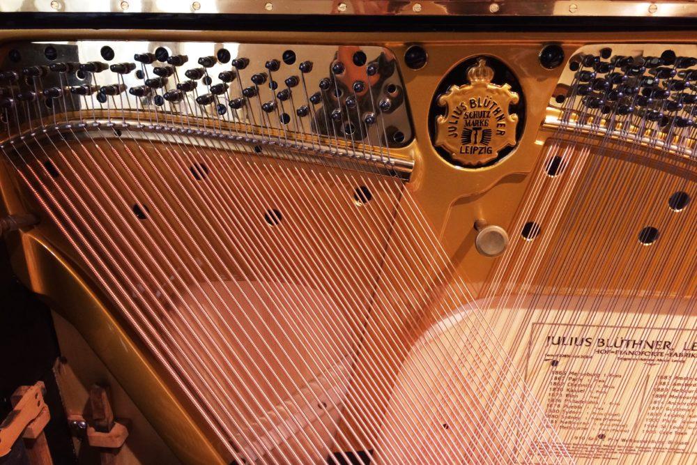 Blüthner Klavier Basssaiten