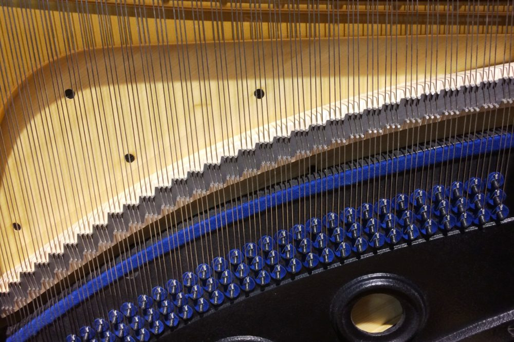 Blüthner Klavier innen