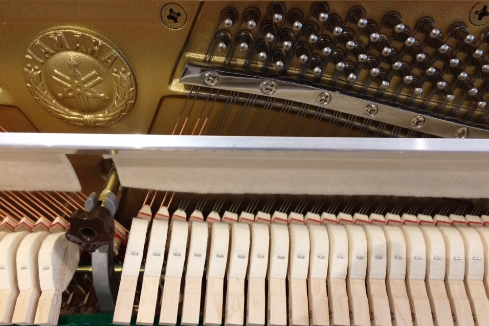 Yamaha B1 Klavier Mechanik