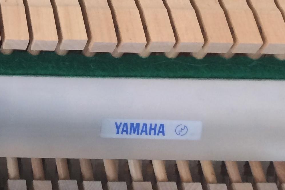 Eterna Piano prod. by Yamaha