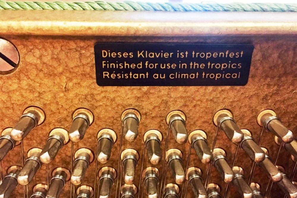 W. Hoffmann Klavier tropenfest