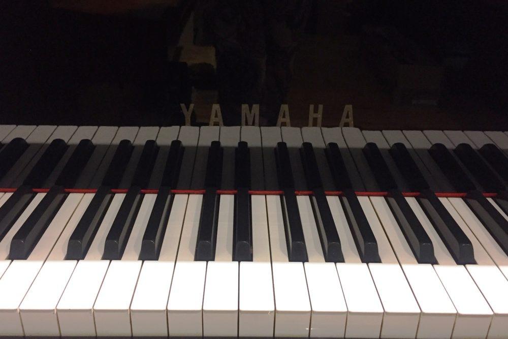 Yamaha C1 Flügel