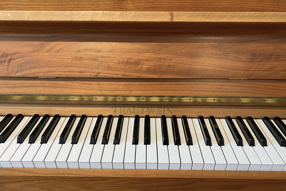 Trautwein-Piano-T113